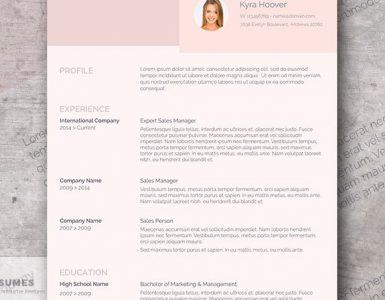 Diseño de Curriculum Vitae Rosa Moderno