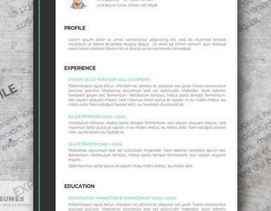 Plantilla CV emprendedor