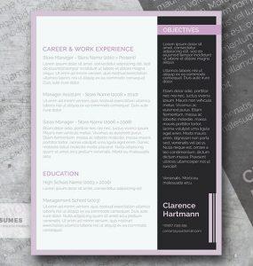 Suave y Limpio Plantilla de Curriculum Vitae Profesional Gratis