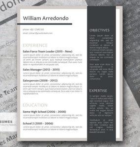 El eficiente diseño de la plantilla de currículum vitae gratis